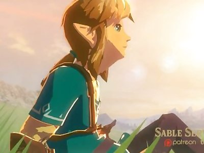 Zelda BOTW - Princess and the Moblins (with Sound)